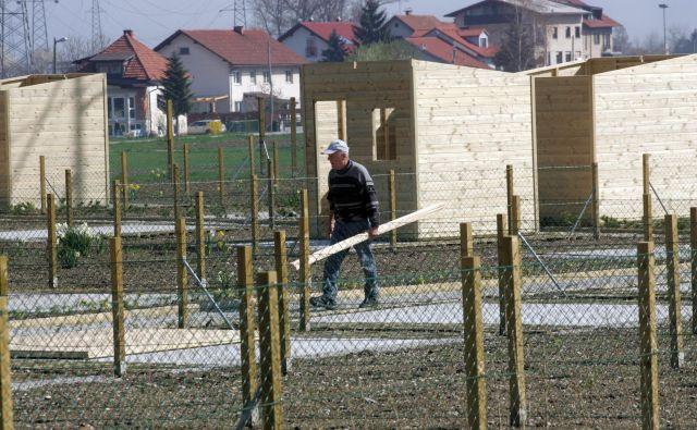 Od ureditve vrtičkov v Dravljah je minilo natančno deset let. FOTO: Mavric Pivk/Delo