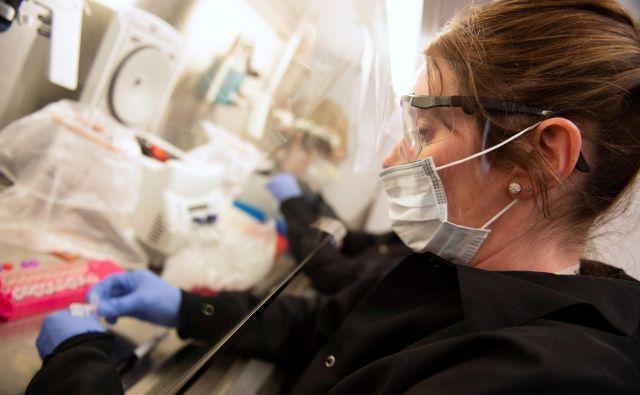 Raziskovalka z univerze Minnesota z vzorci koronavirusa FOTO: Craig Lassig/Reuters