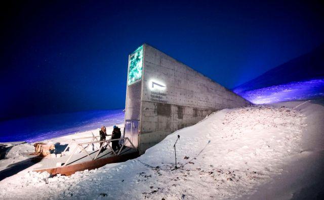 Genska banka je izkopana v goro, ki leži 130 metrov nad morsko gladino. FOTO:Arhiv rastlinske semenske banke Svalbard