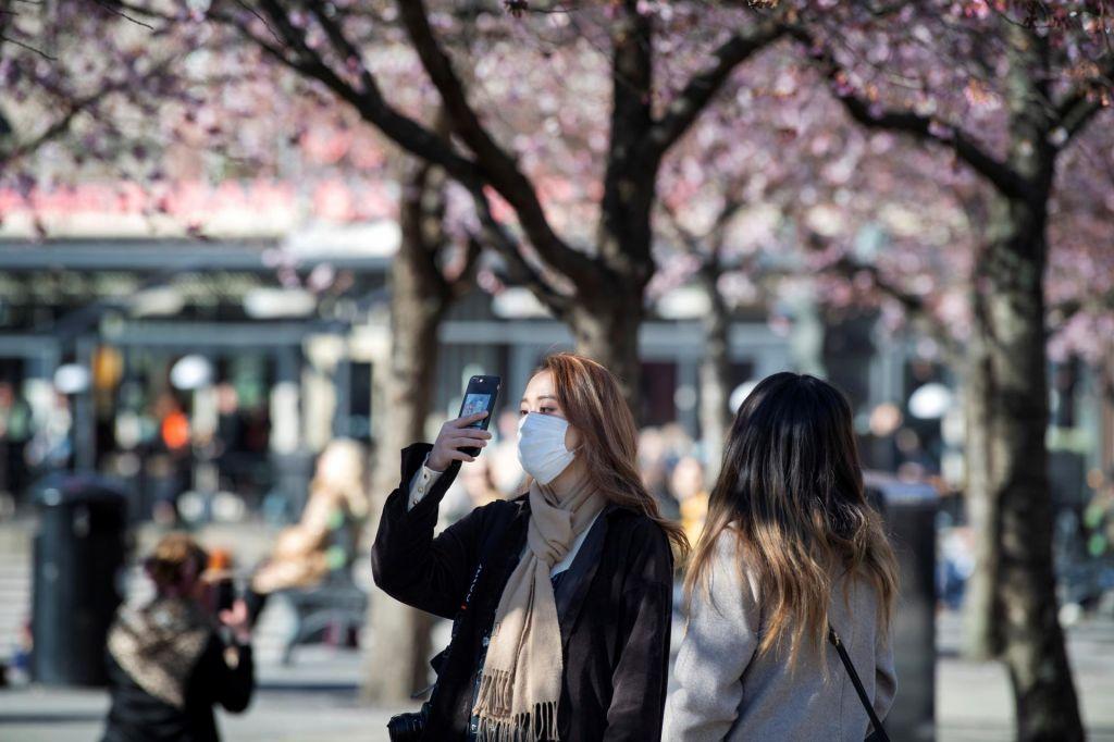 Tolažba češnjevih cvetov