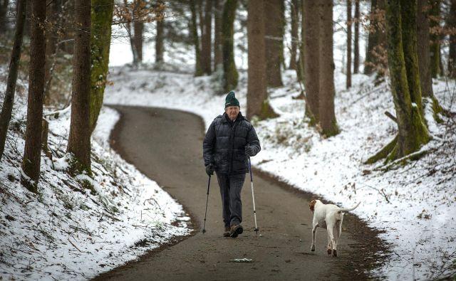 Nekaj razlogov za virusno zadržanost v naši domovini je namreč že v tem, da je Slovenija za virusno širjenje strukturno manj prijazna kot Lombardija. FOTO: Matej Družnik