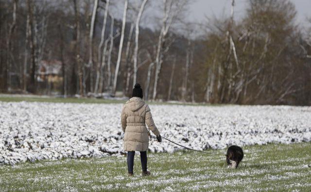 Odlok o začasni prepovedi zbiranja zagotavlja ljudem, da dostopajo do najbližje sprehajalne površine; tudi s psom:<br /> FOTO: Leon Vidic/Delo