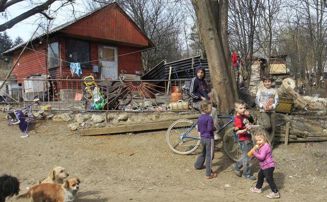 Del romskega naselja Žabjak, kjer Romi živijo v človeka nevrednih življenjskih pogojih. FOTO: Leon Vidic/Delo