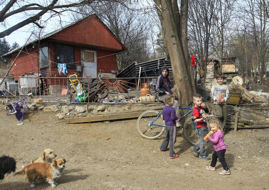 FOTO:»Župani so odgovorni za zdravje Romov«