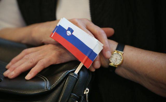 Danes bo iz Španije prispelo drugo letalo s slovenskimi državljani. FOTO: Jure Eržen