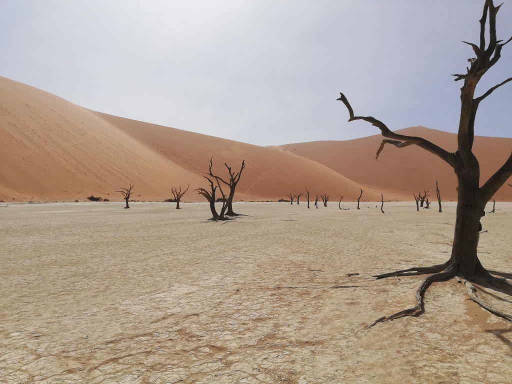 FOTO:Čudoviti odmaknjeni kraji: Sossusvlei