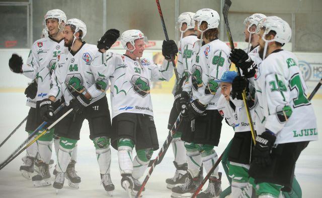 Ljubljanski hokejisti so morali predčasno končati sezono, toda v njihovem vodstvu ni mrtvila. FOTO: Jure Eržen