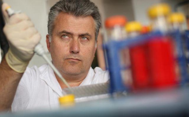 Koordinator projekta dr. Miomir Knežević je tudi direktor vodilnega partnerja konzorcija, biotehnološkega podjetja Educell. Foto Jure Eržen