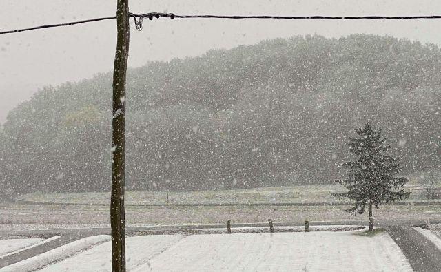 Pobelilo je Haloze. Zavrč danes zjutraj. FOTO: Neurje.si/Twitter/Lea Kralj