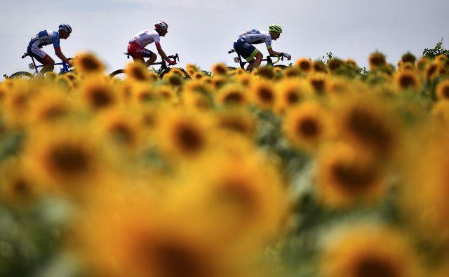 Dirki po Franciji zaradi pandemije ne cvetijo rožice. FOTO: AFP