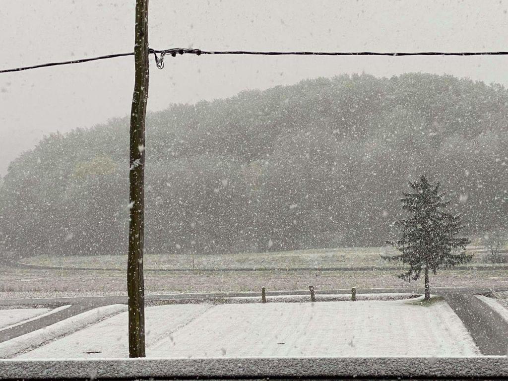 Snežilo tudi na Dolenjskem in v Beli krajini
