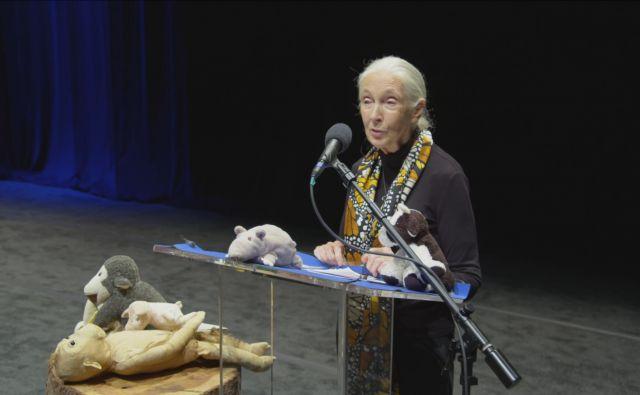 Dr. Jane Goodall FOTO: Chris McCary
