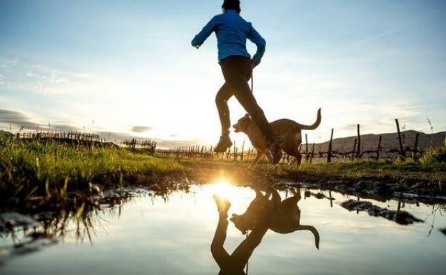 Aktivacija naše muskulature in dvig srčnega utripa sta še kako pomembna dejavnika. FOTO:Shutterstock