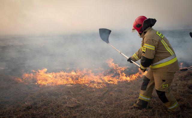 Nekaj sto gasilcev poskuša pogasiti obširen požar v narodnem parku Biebrza na Poljskem. FOTO: Grzegorz Dabrowski/Agencja Gazeta via Reuters