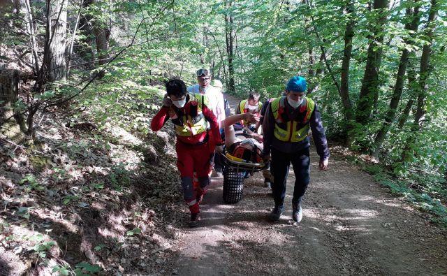 Gozdne poti so v zadnjem času polne pohodnikov, tekačev, kolesarjev, motoristov. FOTO: Jani Bele/GRZS