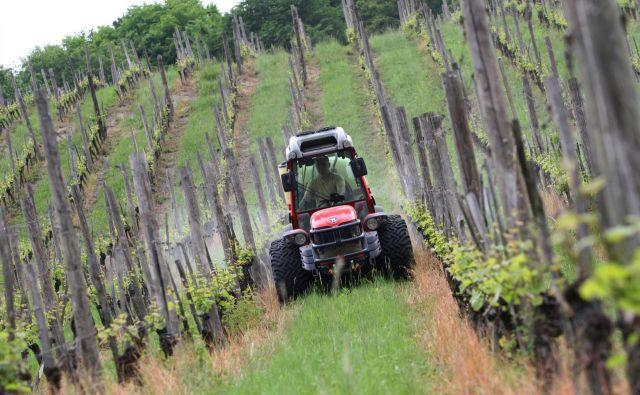 Prave podatke o škodljivosti pesticidov bi dala šele analiza prehrambnih navad in zdravja ljudi, meni mikrobiolog Gorazd Pretnar. FOTO: Tadej Regent