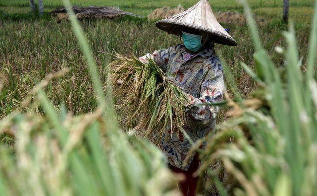 Očitno bo glavni potrošnik v prihodnje azijski srednji razred. FOTO: Reuters