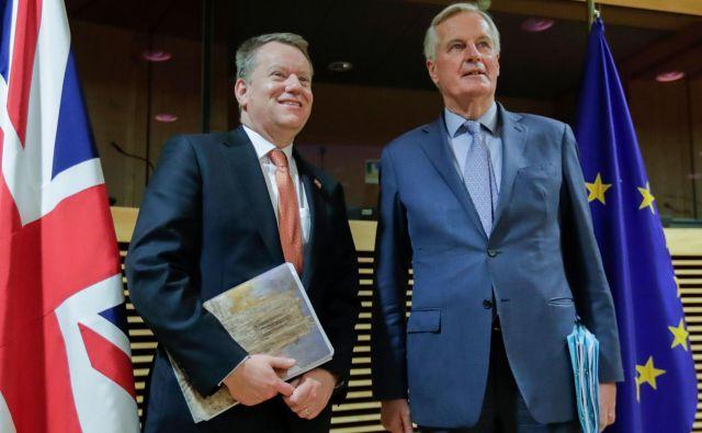 Glavni britanski pogajalec David Frost in njegov francoski kolega Michel Barnier si tokrat ne bosta mogla seči v roke, saj tretji krog pogajanj poteka prek videopovezave. Foto AFP