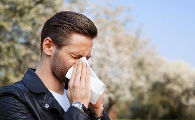 Alergija na cvetni prah je zelo pogosta in predvsem spomladi povzroča največ težav. FOTO: Shutterstock