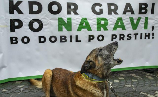 Glas za naravo so oddali tudi pasji ljubljenci. FOTO: Voranc Vogel