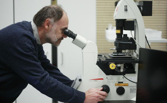 Prof. dr. Roman Jerala FOTO: Leon Vidic/Delo