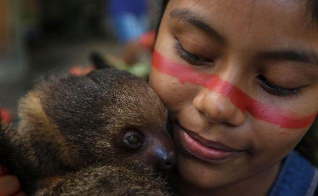 Deklica iz staroselskega ljudstva v brazilski skupnosti Wakiru, zahodno od Manausa, v zvezni državi Amazonas, k sebi stiska njenega hišnega ljubljenčka lenivca. Po besedah poglavarja skupnosti enajst ljudi kaže simptome COVID-19. Lokalne in državne vlade so izjavile, da staroselcem ne bodo pomagale, zato se obračajo na predznanje o naravi in naravnem zdravljenju. FOTO: Ricardo Oliveira/Afp<br />