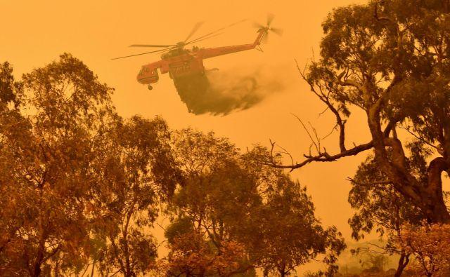 V zadnji sezoni požarov je v Avstraliji zaradi dima umrlo 445 ljudi, neposredno zaradi ognja pa le 33. FOTO: Peter Parks/Afp
