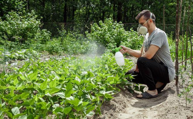 Med najbolj strupenimi pesticidi so insekticidi, proti škodljivim žuželkam. V vrtu se jih izogibamo. FOTO: Shutterstock