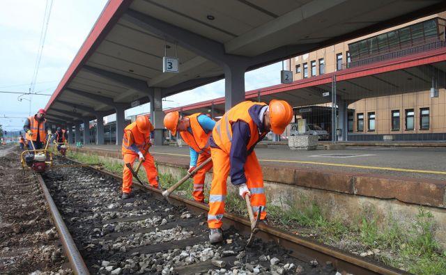 Med pomembnimi projekti je tudi modernizacija železnic. Foto Tadej Regent