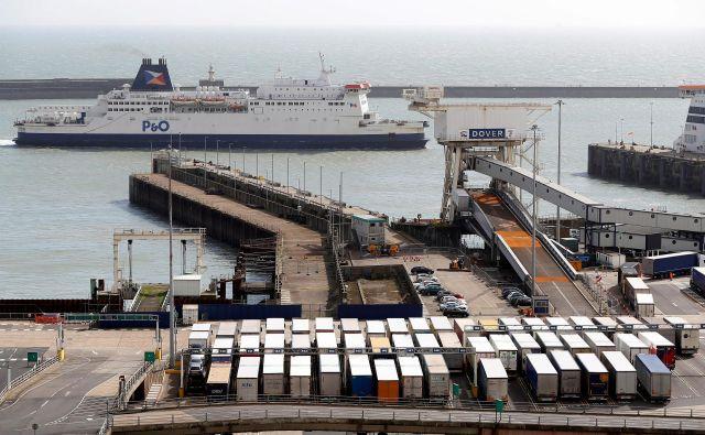 Koprčana so ujeli v dovrskem pristanišču. FOTO: Reuters