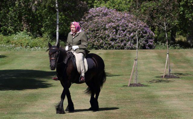 Portret 94-letne angleške kraljice Elizabeth II na 14-letnem poniju Balmoral Fern v winsdorskem parku. FOTO: Steve Parsons/Afp