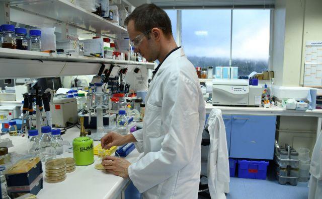 V znanost na Štajerskem bi bilo potrebnega precej vlaganja, preden bi se tam sploh pojavila potreba po strukturni biologiji.FOTO: Osebni arhiv