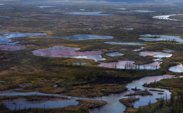 Območje onesnaženja pri Norilsku.FOTO: Irina Yarinskaya/AFP