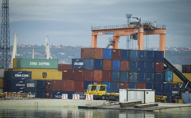 Eden od pogledov, kakšna bo v prihodnje globalizacija, je, da bodo podjetja imela več dobaviteljev, ne le enega optimalnega, kar bo zagotovilo dodatno varnost, če se zgodi kaj nepredvidenega. FOTO: Jože Suhadolnik/Delo