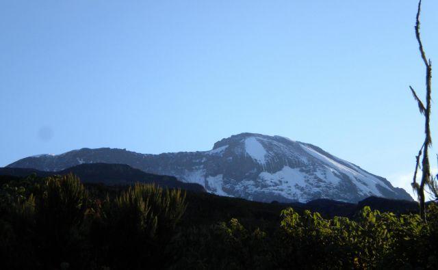 Ob sončnem vzhodu se zlato zasvetijo beli prameni Kilimandžara