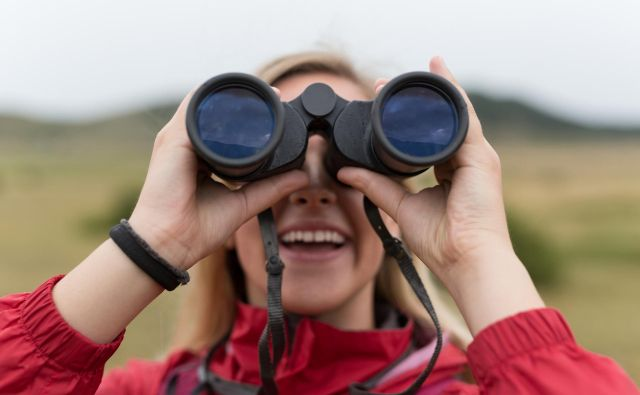 Morda bi lahko ornitolog prepoznal, katero bitje moti javni red in mir. FOTO: Shutterstock