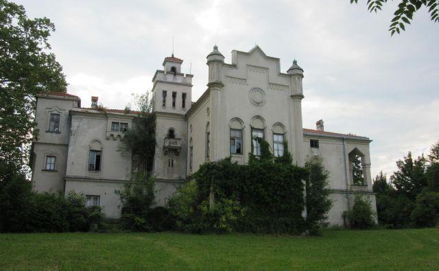 Dvorec Jelšingrad bi lahko tudi razlastili, če ga drugače ne bodo mogli zaščititi, opozarja šmarski župan Matija Čakš. FOTO: Špela Kuralt/Delo