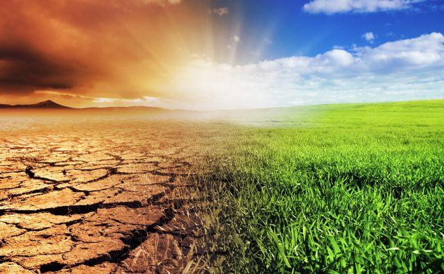 Podnebne spremembe zahtevajo ukrepe, da preprečimo vse večje škode zaradi suš, pozeb, viharjev in poplav. Foto Shutterstock