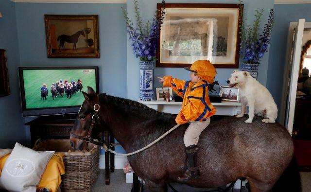 3-letni Merlin Coles s konja opazuje konjske dirke na Royal Ascotu preko televizije na svojem domu v Bere Regisu v Veliki Britaniji, kjer je množična udeležba na tovrstnih dogodkih še vedno prepovedana. FOTO: Paul Childs/Reuters