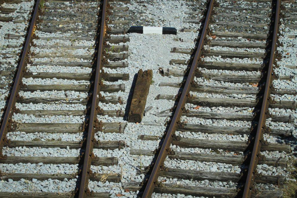 Vlak povozil delavca