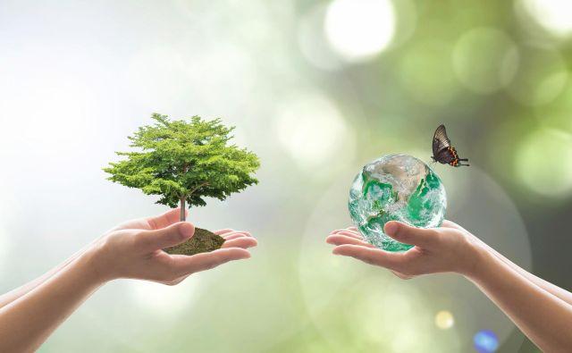 Prednostno se bomo morali naučiti ekološke abecede, da bomo razumeli in v skupno korist urejali ekosisteme. Foto Shutterstock