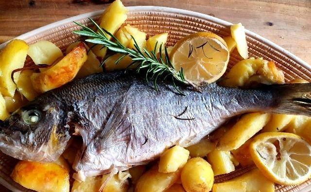 Ribe so redna jed na športnikovem jedilniku. FOTO: Tanja Drinovec