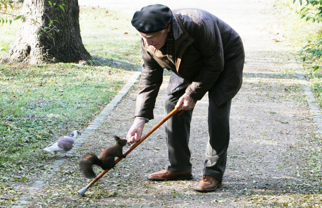 Kako preprečiti padce starejših