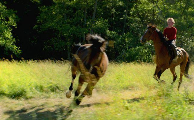 Trond jezdi divje konje, ki so zaznamovali njegovo življenje.<br /> Foto promocijsko gradivo