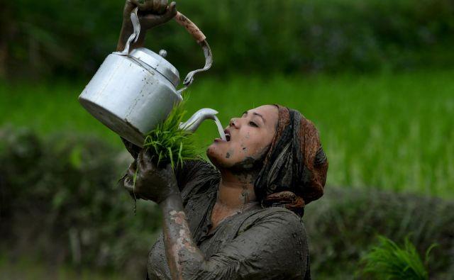Ženska pije riževo vino, med sajenjem riža na dogodku, ki označuje začetek letne sezone sajenja riža na obrobju Katmanduja. Kmetje v Nepalu praznujejo nacionalni dan riževih polj, ko se začne letna sezona sajenja riža. FOTO: Prakash Mathema/Afp