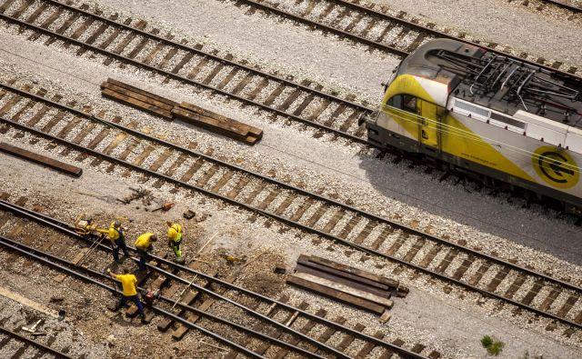 Nujno je treba investirati v boljšo infrastrukturo, meni nekdanja komisarka Violeta Bulc in dodaja, da bi bil zdaj paradoks na kvadrat, če bi Slovenija načrtovala več cest, saj lahko za železniške projekte dobi tudi do 80-odstotno sofinanciranje. FOTO: Voranc Vogel/Delo