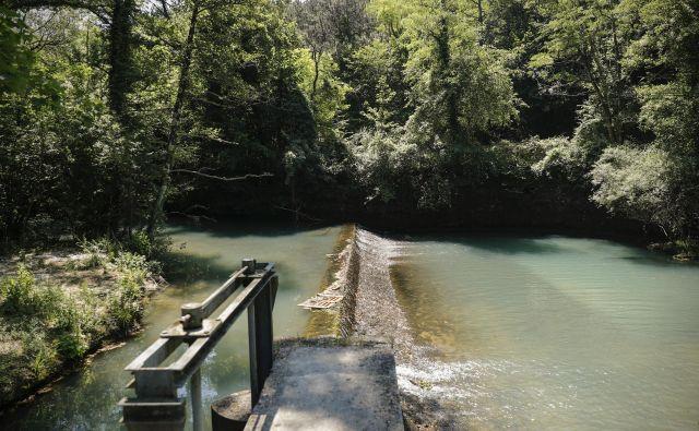 Vodno zajetje Rižana ne zadostuje za zagotovitev preskrbe z vodo v slovenski Istri. FOTO: Uroš Hočevar/Delo
