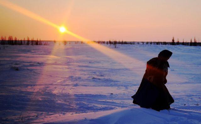 Arktika se v povprečju segreva 2,5-krat hitreje od svetovnega povprečja. FOTO: Sergei Gapon/AFP