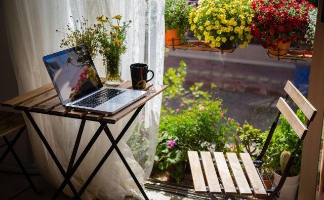 Pokažite nam svoje balkonske zasaditve. Sodelujoče čaka kar 25 nagrad. Foto Sansarci/Shutterstock