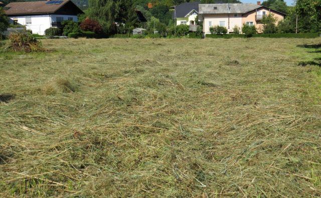 Najprej bodo sredi Moravč pospravili seno, nato pa začeli postavljati zidake za dom. FOTO: Bojan Rajšek/Delo